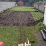 drumcondra garden design Paving