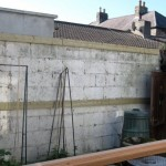 ranelagh garden Fencing (2)