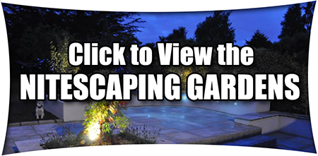 Gardens at night - Nitescaping Garden Design